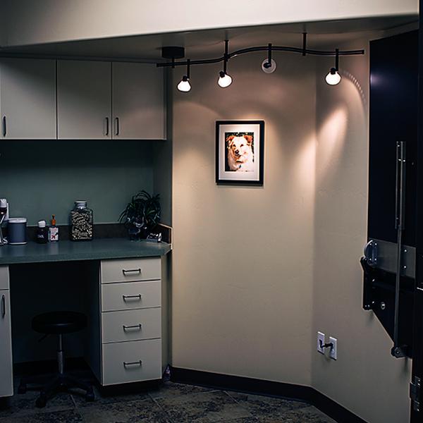 Prescott Area Pet Emergency Hospital exam room
